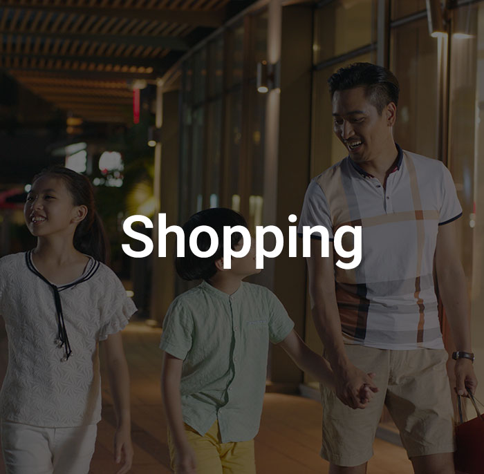 Dark overlay with the word shopping on an image of a family happily shopping in the evening.